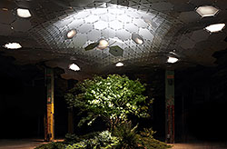 Copyright: The Lowline, James Ramsey, New York, USA